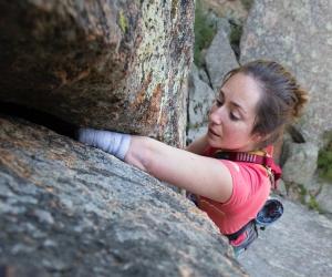 Stumped climbing movie